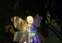 Children's Christmas Tree Trail by Storm Smart